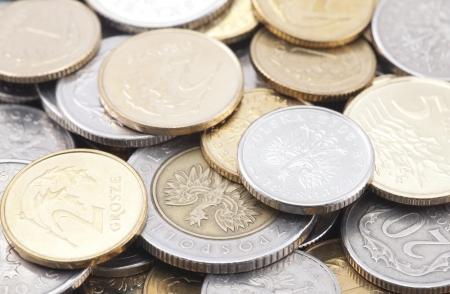Polish coins photo