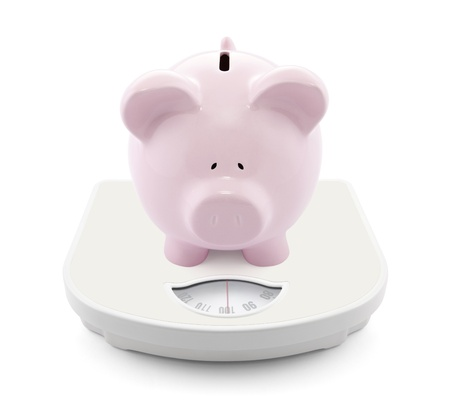 animal scale: Piggy bank on scales