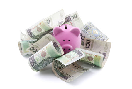 Piggy bank with polish money  Clipping path included  photo
