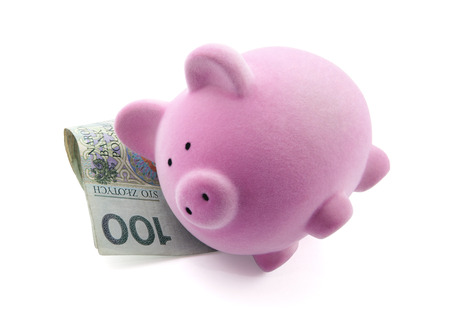 Piggy bank sleeping on polish banknotes  Clipping path included  photo
