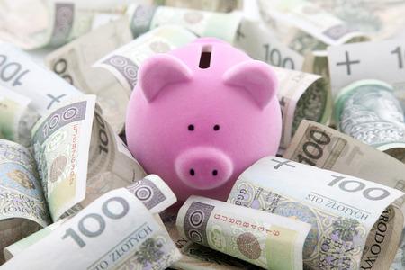 Piggy bank with polish money photo