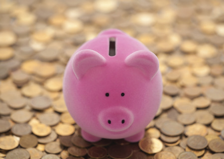 Pink piggy bank on coins Stock Photo