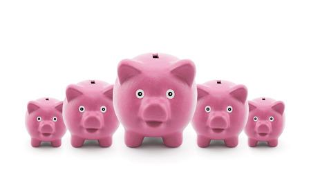 cerdos: Grupo de alcancías de color rosa