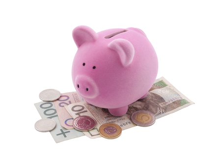 path to wealth: Piggy bank on polish banknotes. Clipping path included. Stock Photo