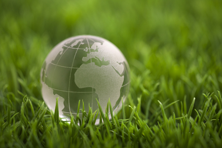 Crystal globe on green grass. World environmental concept.