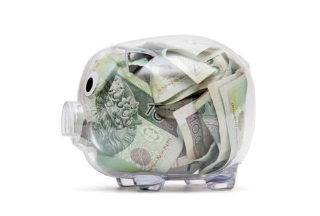 Transparent piggy bank with polish money. Clipping path included.
