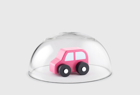 Small wooden toy car protected under a glass dome