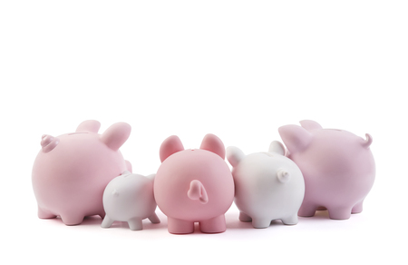 Group of piggy banks on white background with clipping path