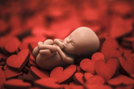 Embryon humain sur de nombreux coeurs rouges