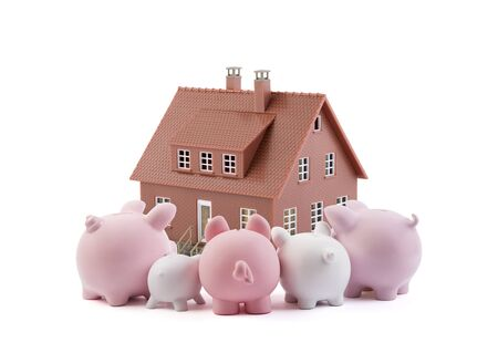 Group of piggy banks looking at the brown house