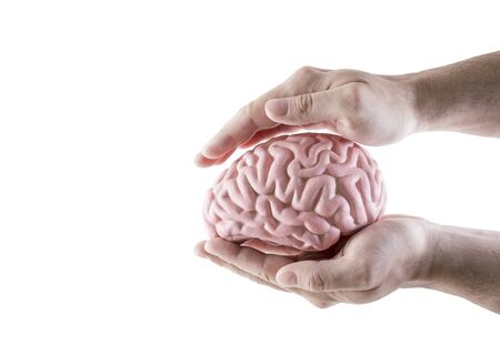 Human brain covered by hands isolated on white background