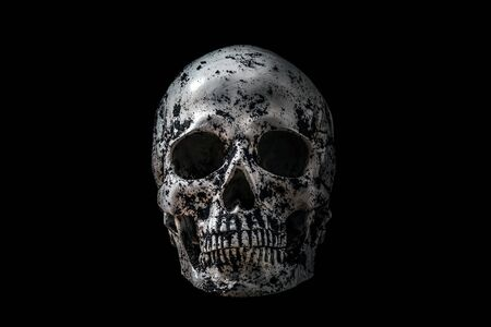 Human skull in black soil isolated on black Zdjęcie Seryjne