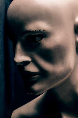 Male mannequin portrait 免版税图像