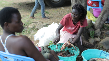 KENYA, KISUMU - MAY 23, 2017: Man and woman cleaning raw fish together. Family in Africa preparing dinner using knife.