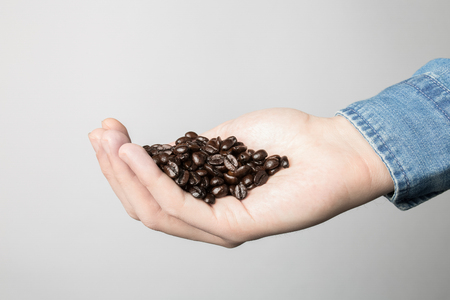 Hand in blue shirt is holding coffee beans