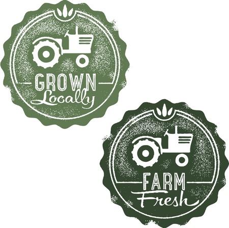 Vintage Farm Fresh en Plaatselijk Gegroeid Stock Illustratie