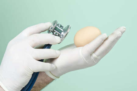 consulted: chicken egg is consulted with a stethoscope