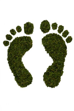 Green leaf design footprints isolated on white background Stock Photo - 14387149