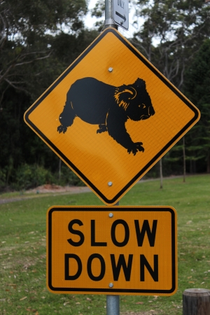 Australian koala slow down road sign Stock Photo - 15707707