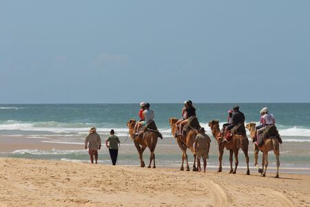 Tourists riding camels along beach in Australia Editorial