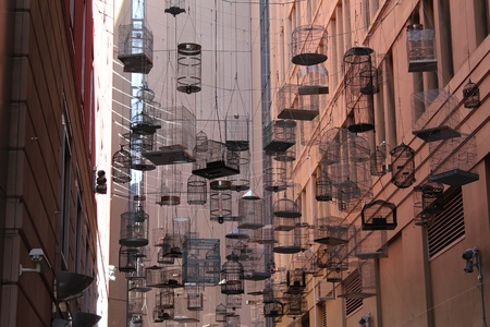Suspended birdcages in city