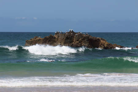 Sea birds on rock formation off surf beach against blue sky