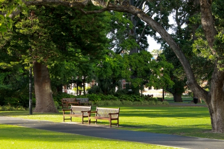 Empty wooden park bench seats in city garden with path, trees and grass