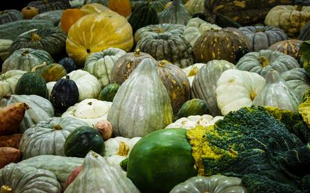 Pumpkins squash gourds vegetable harvest Stock Photo