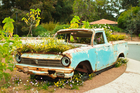 Rusty pick up ute truck overgrown with flowers Stock Photo