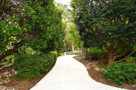 Winding garden pathway