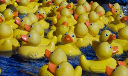 Yellow toy ducks at carnival floating on water