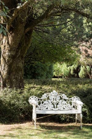 White metal garden seat underneath tree