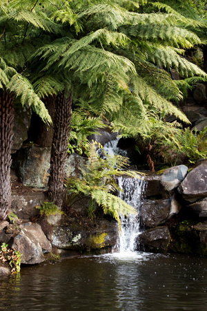 Waterfall over sandstone rocks into pool garden surrounded by ferns Stock Photo