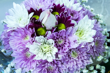 Purple and white posy bouquet of chrysanthemum flowers surrounding a single white rose Stock Photo