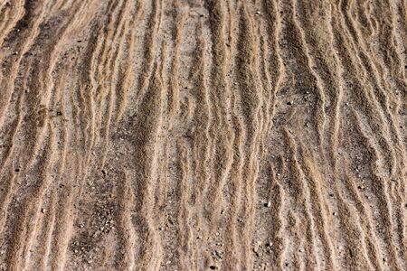 Sandstone rock face surface layers weathered by seaside, ideal as natural geologic background Standard-Bild