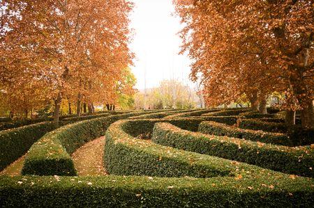 Garden El capricho (Madrid - Spain) - Maze