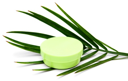 natural products: Plant and cream  Spa  On a white background  Stock Photo