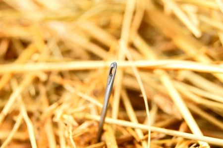 pin needle: Needle in hay