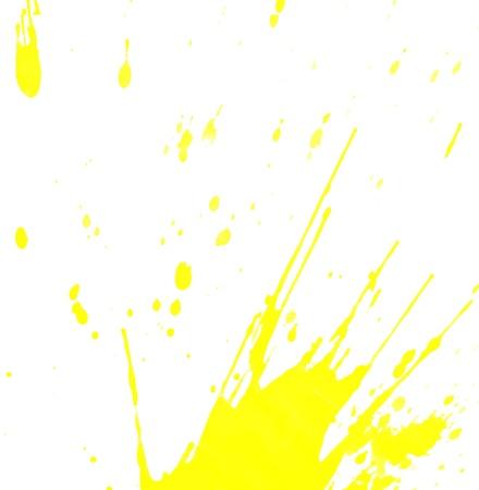 Yellow splashes on a white background  photo