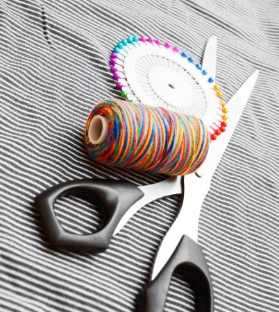 Threads, scissors and needles on a fabric  Stock Photo - 13807028