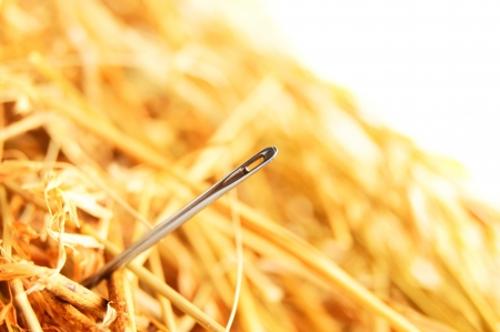 pin needle: Needle in a haystack
