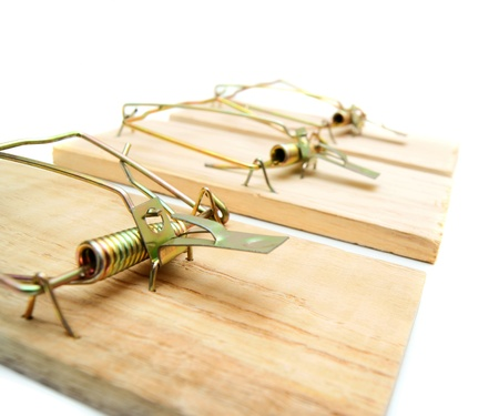 booby trap: Mousetraps. On a white background.