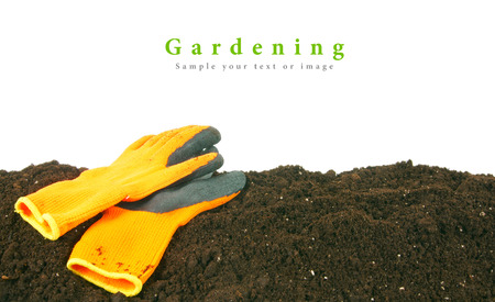 gardening gloves: Gardening. Gloves on the earth. Stock Photo
