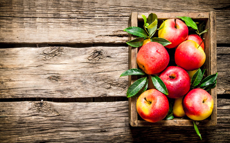 나무 배경에 나무 상자에 신선한 빨간 사과. 스톡 콘텐츠 - 49982111