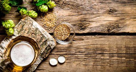 barley malt: Glass of beer on a birch stand, malt and hops on wooden background. Top view Stock Photo