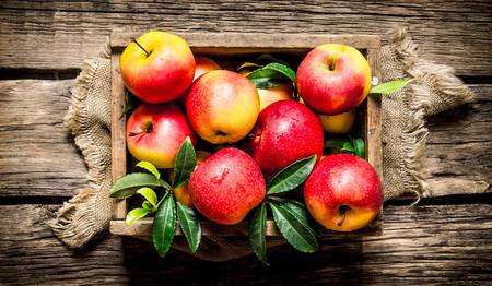 나무 배경에 나무 상자에 신선한 빨간 사과. 평면도 스톡 콘텐츠