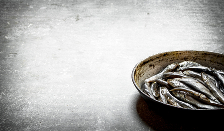 Sprat in the old pan. On the stone table. Stock Photo