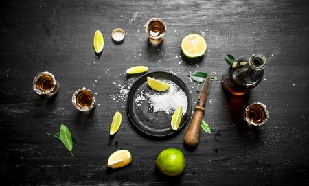 pan tropical: bottle of tequila with shot glasses, fresh lime and salt. On the chalkboard. Stock Photo