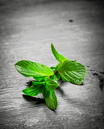 Branch of fresh mint. On the black wooden table.
