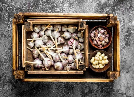 Fresh garlic in an old box. On a rustic background.